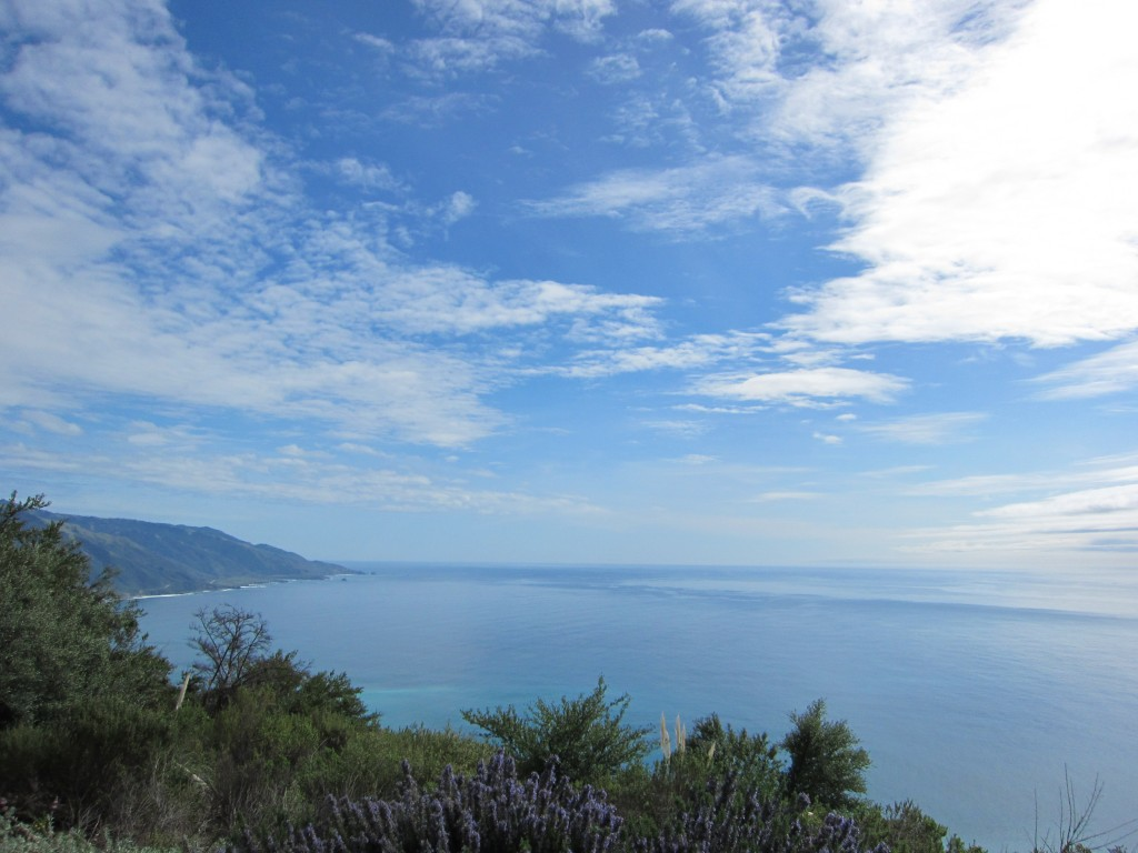 Big Sur vista from my silent retreat in March 2011